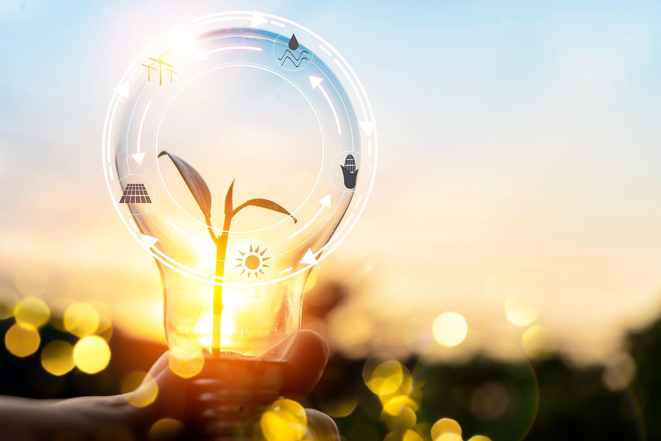Eficiência energética nas empresas: por onde posso começar?